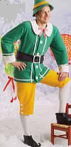 elf adult roleplaying fantasy costume